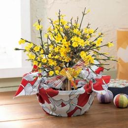 【日比谷花壇】お正月 「黄梅」