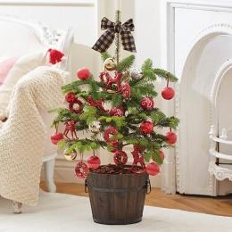 【日比谷花壇】【クリスマス】モミの木のツリー「チャーミングツリー」