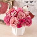 【日比谷花壇】香りを楽しむギフト ESTEBAN「マグノリアローザ」とプリザーブドフラワーのセット