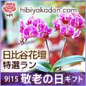 日比谷花壇 フラワーギフト 秋の花贈り 敬老の日