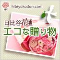 日比谷花壇 フラワーギフト エコ特集