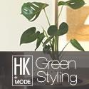 日比谷花壇  お部屋を美しくデザインする癒しのグリーン