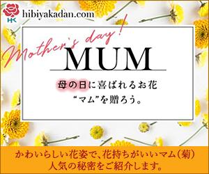 日比谷花壇_母の日ギフト_マム(菊)コラム