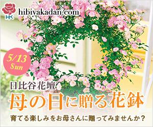 日比谷花壇_母の日ギフト