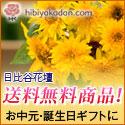 日比谷花壇 夏の送料無料