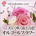 美しく咲く花と音色「オルゴールフラワー」【日比谷花壇】