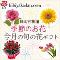 今月の旬の花