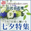 日比谷花壇 フラワーギフト 七夕 7月7日