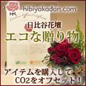 日比谷花壇 ウィンター フラワーギフト