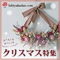 日比谷花壇_2012クリスマス_フラワーギフト
