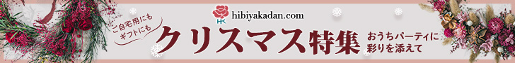 日比谷花壇_クリスマス特集_フラワーギフト