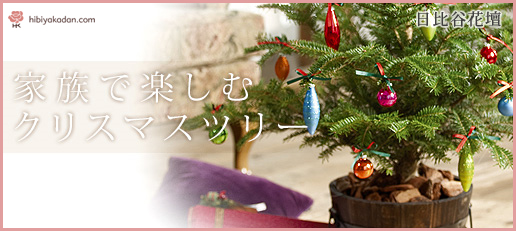 日比谷花壇 フラワーギフト クリスマス特集