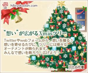 2012_日比谷花壇_クリスマス