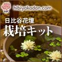 日比谷花壇 栽培キット