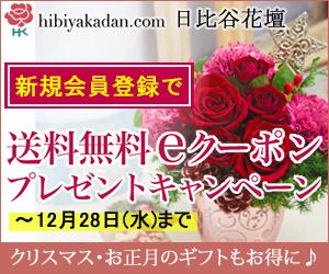 日比谷花壇_冬の花ギフト_送料無料クーポンキャンペーン