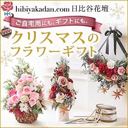 2013日比谷花壇_クリスマス特集